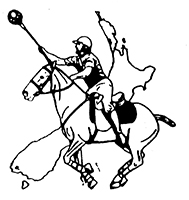 NZ Polocrosse logo